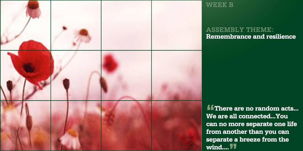 Week Beginning 11 November
