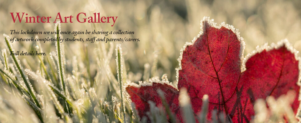 Winter-Gallery